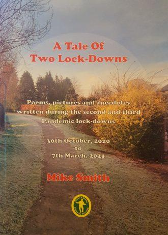 A Tale of Two Lockdowns